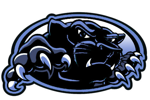 Image result for North Mac Panthers Logo